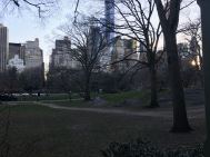 Central Park - wow